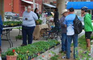 Through the efforts of Downtown Houston, Inc., the Houston Farmers Market has expanded to two days and features a variety of produce.